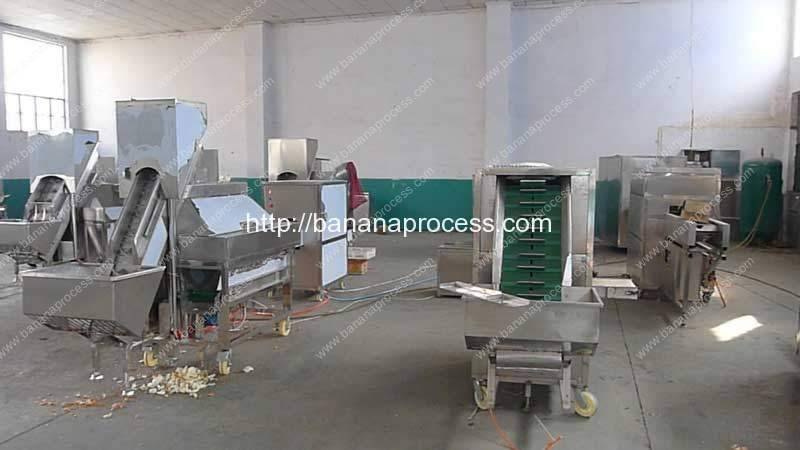 Banana-Peeling-Machine-Factory-Visit