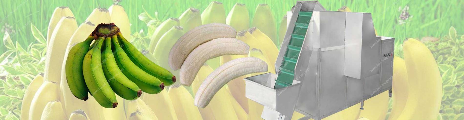 Banner04-Automatic-Feeding-Green-Unripe-Banana-Peeling-Machine-for-Sale