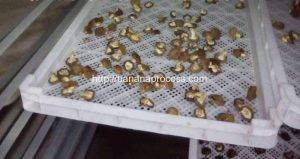 Natural-Gas-Fired-Batch-Type-Banana-Chip-Dryer-Oven