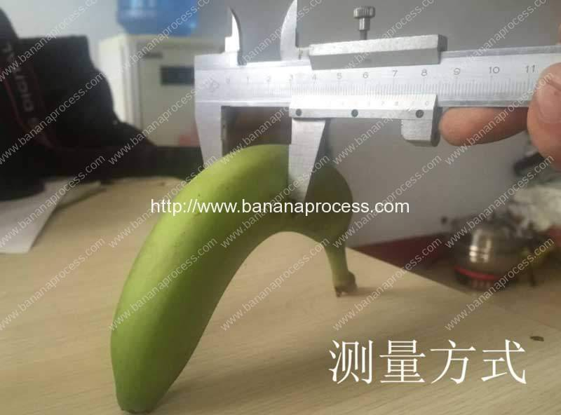 Single Inlet Green Plantain Peeling Machine for India Customer