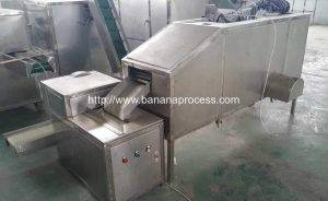 Double Inlet Green Banana Peeling Machine with Banana Cutting Machine Testing for Nigeria