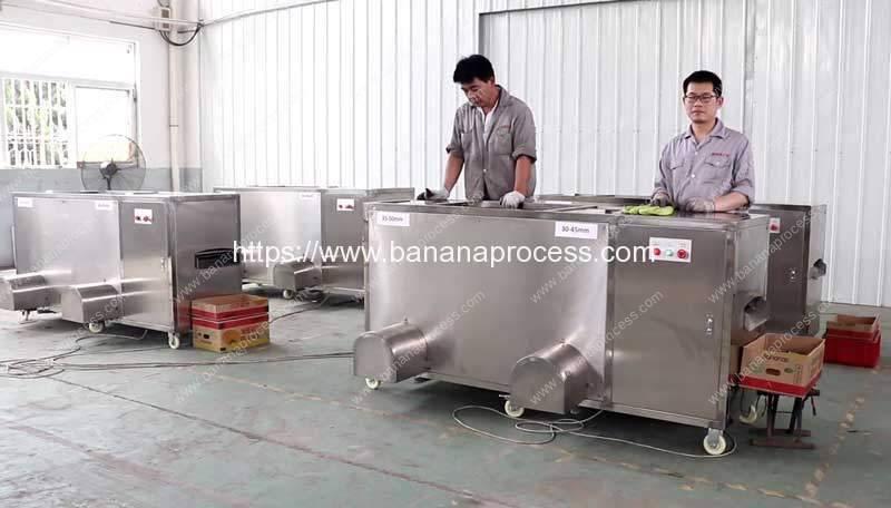 Four-Sets-Double-Inlet-Green-Banana-Peeling-Machine