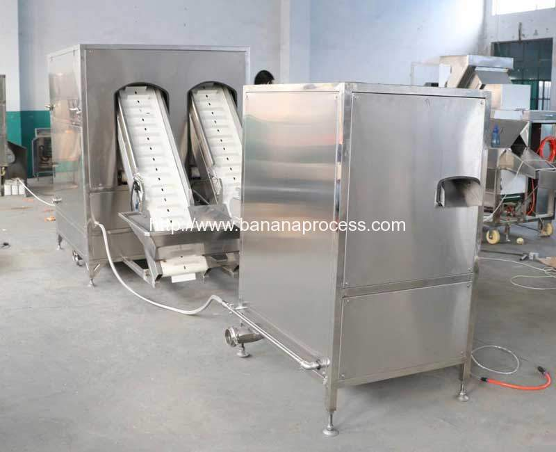 1000kgh-High-Capacity-Yellow-Ripe-Banana-Peeling-Machine-with-Double-End-Cutting-Machine