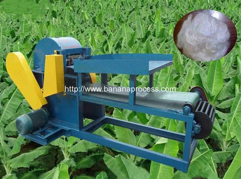 Automatic-Banana-Tree-Fiber-Extracting-Making-Machine