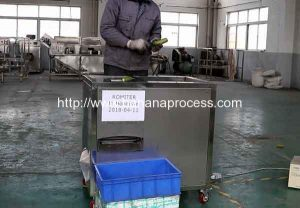 Automatic Green Banana Peeling Machine for Honduras Customer