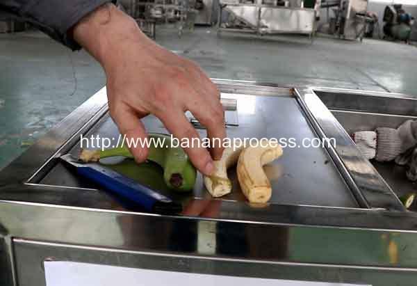 Green-Banana-Peeling-Machine-Before-Peeling-and-After-Peeling