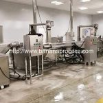 Automatic Banana Chips Production Line with Sugar Covering Machine