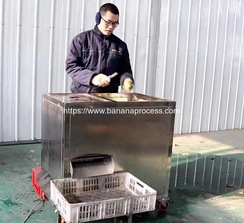 Manual-FeedingGreen-Plantain-Peeling-Machine-for-Malaysia-Customer