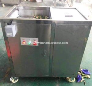 Automatic-Single-Inlet-Green-Banana-Peeling-Machine-for-Mauritius-Customer