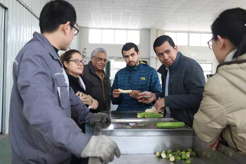 Salvador-Customer-Visit-Green-Banana-Peeling-Machine