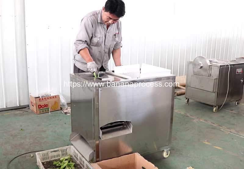Green-Banana-Peeling-Machine-for-Puerto-Rico-Customer