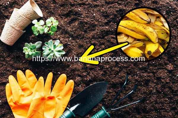 Banana-Peel-Easy-Composting
