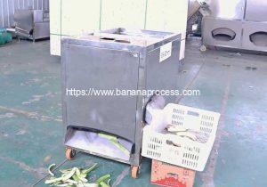 Automatic-Green-Banana-Peeler-Machine-Video-for-Costa-Rica-Customer