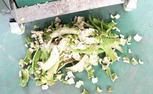 Advanced-Auto-Feeding-Green-Banana-Peeling-Machine-Peel