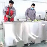 Double Inlet Green Banana Peeling Machine for Peru Customer