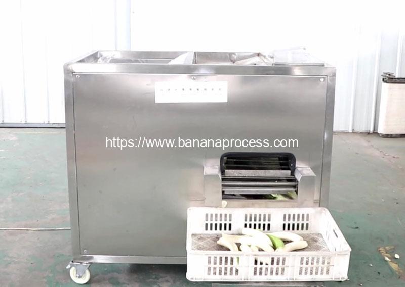 Auto-Feeding-Type-Green-Banana-Peeling-Machine-for-Peru-Customer