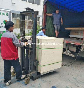 Auto-Feeding-Type-Green-Banana-Peeling-Machine-for-Peru-Market